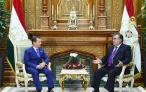 Встреча Президента Республики Таджикистан Эмомали Рахмона с Председателем Правительства Российской Федерации Дмитрием Медведевым