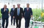 Дан официальный старт деятельности современной теплицы в Бободжон Гафуровском районе