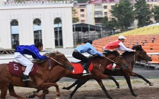 В честь Дня Президента Таджикистана в столице состоятся конные скачки